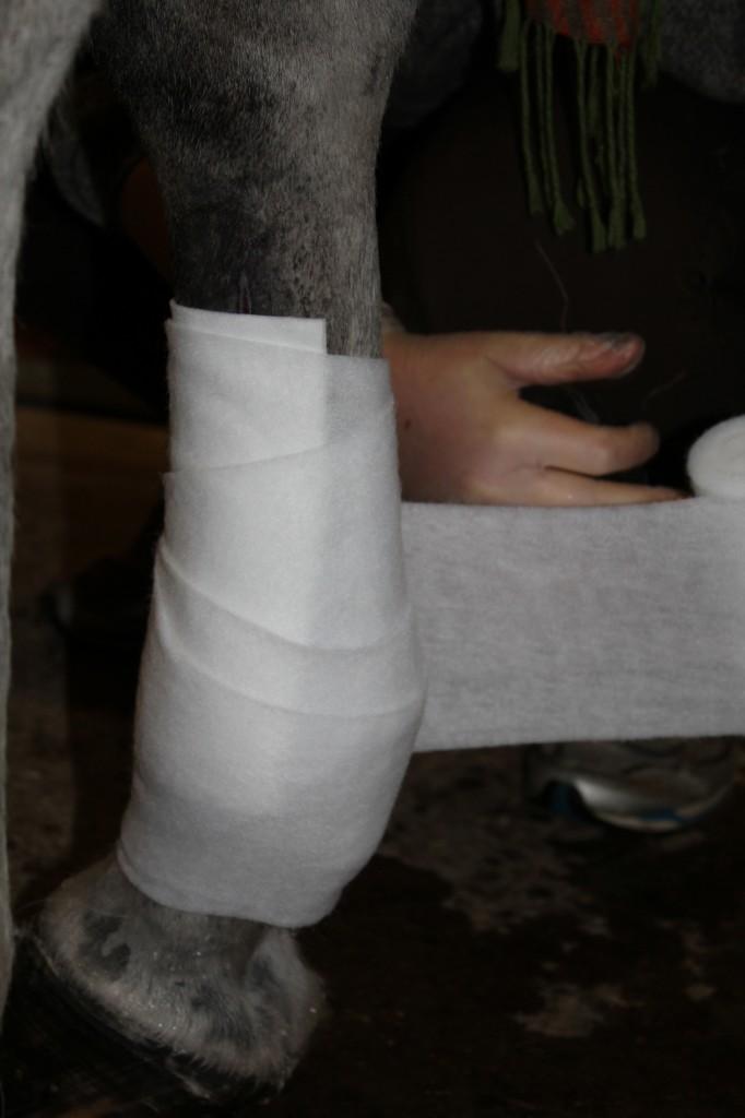 Bandage byte