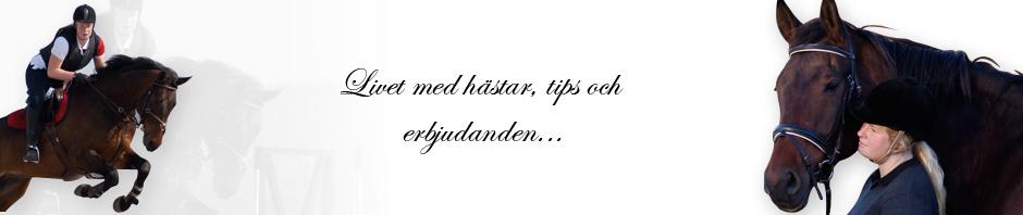 HÄSTBLOGGEN.se
